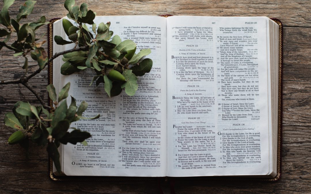 5 Ways to Stay Motivated When Memorizing Scripture
