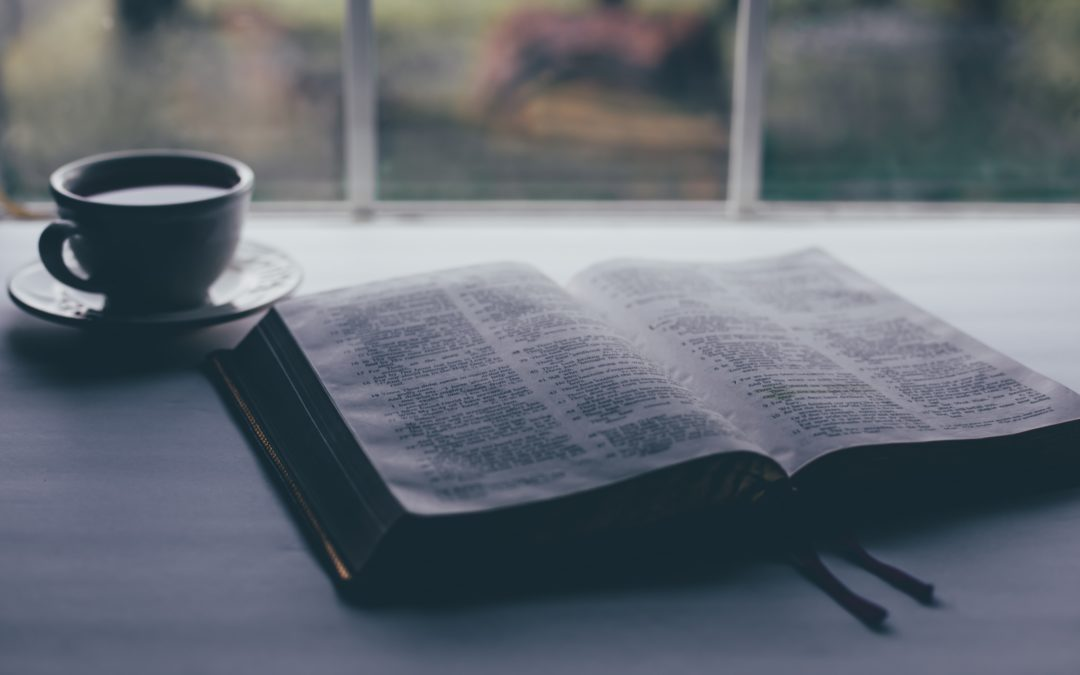 Three Lessons from Investing in Scripture