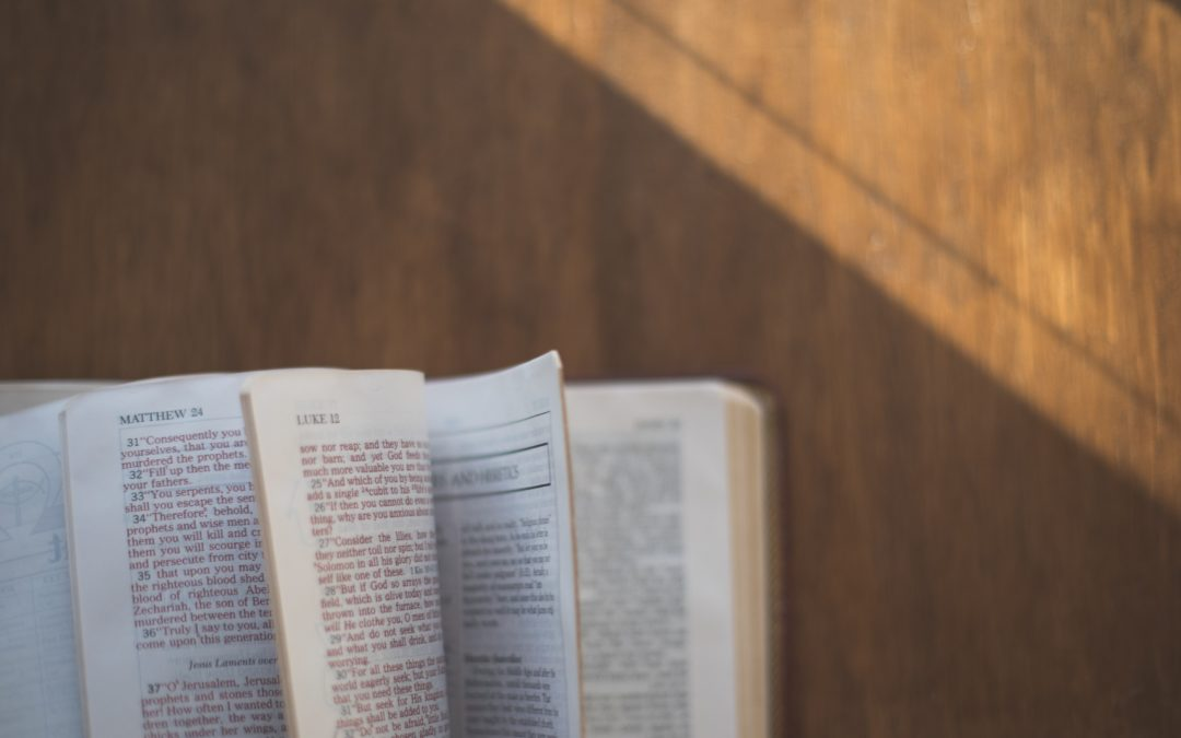 The Impact of Scripture: Interviews with Semi-Finalists